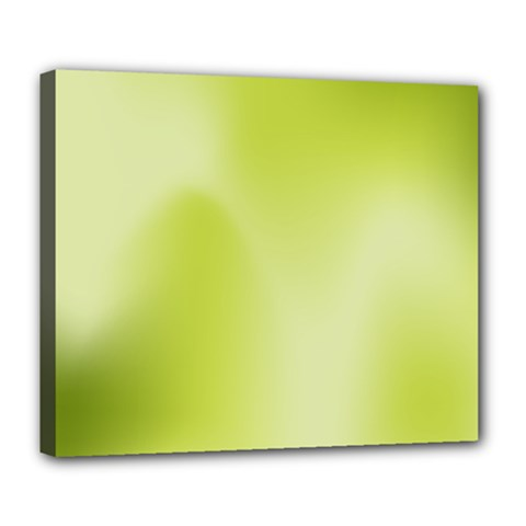 Green Soft Springtime Gradient Deluxe Canvas 24  X 20