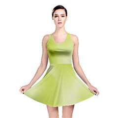 Green Soft Springtime Gradient Reversible Skater Dress