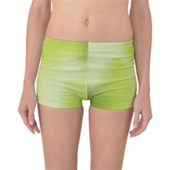 Green Soft Springtime Gradient Boyleg Bikini Bottoms