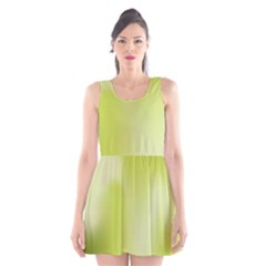 Green Soft Springtime Gradient Scoop Neck Skater Dress