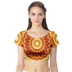 Powerful Love Mandala Short Sleeve Crop Top (tight Fit) by designworld65