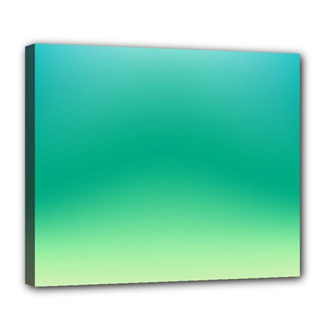 Sealife Green Gradient Deluxe Canvas 24  X 20