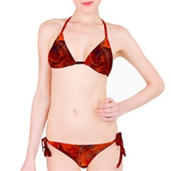 Swirly Love In Deep Red Bikini Set
