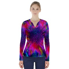 Flowers With Color Kick 3 V Neck Long Sleeve Top