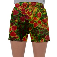Flower Red Nature Garden Natural Sleepwear Shorts