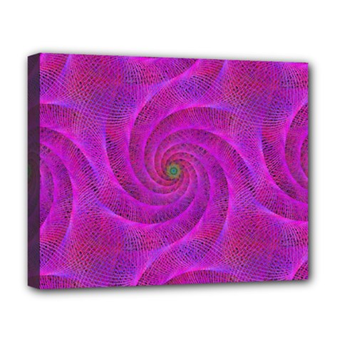 Pink Abstract Background Curl Deluxe Canvas 20  X 16