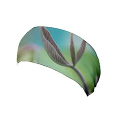Leaves Grass Plants  Yoga Headband by amphoto