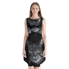 Domestic Cat Sleeveless Chiffon Dress