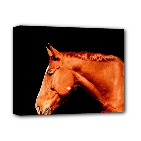Horse Deluxe Canvas 14  X 11  by Valentinaart