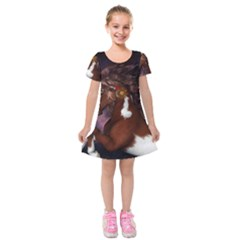 Steampunk Wonderful Wild Horse With Clocks And Gears Kids  Short Sleeve Velvet Dress by FantasyWorld7