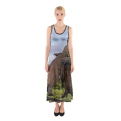 Komodo Dragons Fight Sleeveless Maxi Dress