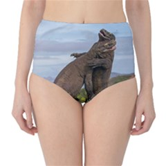 Komodo Dragons Fight High Waist Bikini Bottoms