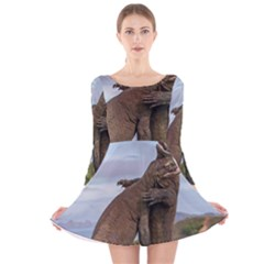 Komodo Dragons Fight Long Sleeve Velvet Skater Dress