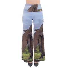 Komodo Dragons Fight Pants