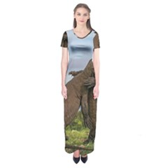 Komodo Dragons Fight Short Sleeve Maxi Dress