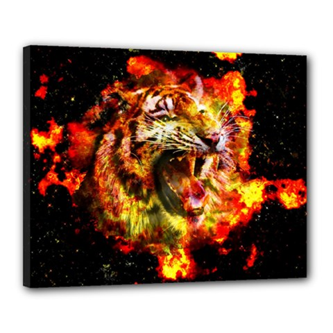 Fire Tiger Canvas 20  X 16  by stockimagefolio1
