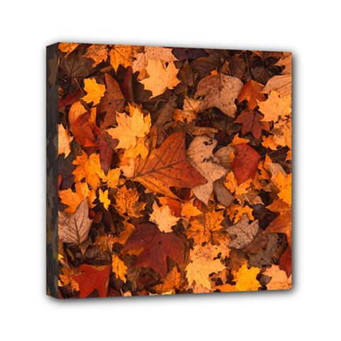 Fall Foliage Autumn Leaves October Mini Canvas 6  X 6