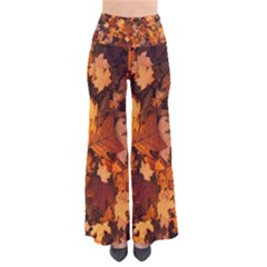 Fall Foliage Autumn Leaves October Pants