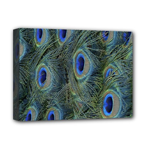 Peacock Feathers Blue Bird Nature Deluxe Canvas 16  X 12