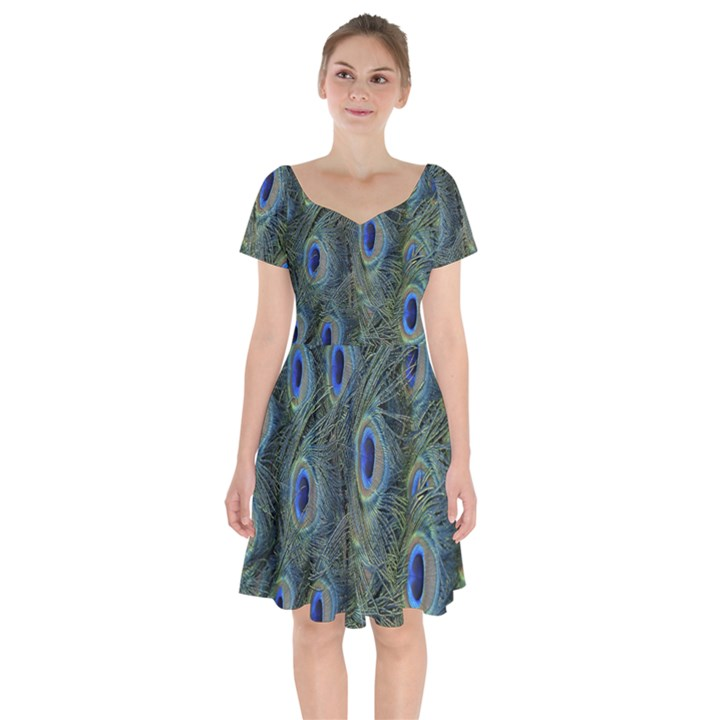 Peacock Feathers Blue Bird Nature Short Sleeve Bardot Dress
