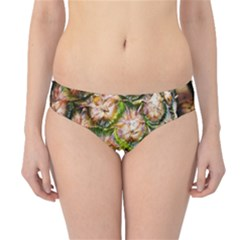 Pineapple Texture Macro Pattern Hipster Bikini Bottoms