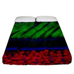 Cells Rainbow Fitted Sheet (king Size) by Mariart