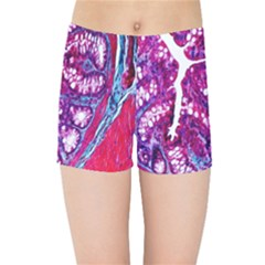 Histology Inc Histo Logistics Incorporated Masson s Trichrome Three Colour Staining Kids Sports Shorts