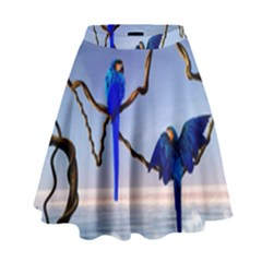 Wonderful Blue  Parrot Looking To The Ocean High Waist Skirt by FantasyWorld7