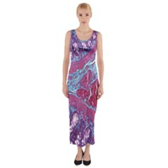 Natural Stone Red Blue Space Explore Medical Illustration Alternative Fitted Maxi Dress by Mariart