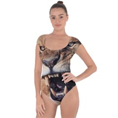 Male Lion Angry Short Sleeve Leotard  by Zhezhe