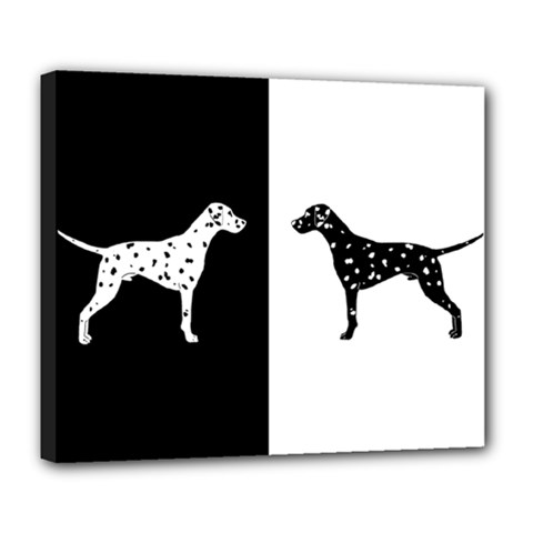 Dalmatian Dog Deluxe Canvas 24  X 20   by Valentinaart