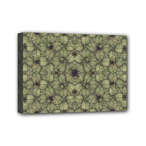Stylized Modern Floral Design Mini Canvas 7  X 5  by dflcprints