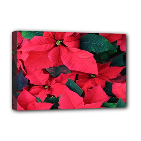 Red Poinsettia Flower Deluxe Canvas 18  X 12   by Mariart
