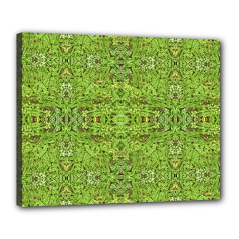 Digital Nature Collage Pattern Canvas 20  X 16  by dflcprints