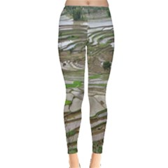 Rice Fields Terraced Terrace Leggings  by Nexatart