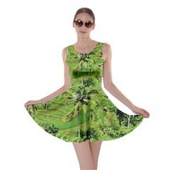 Greenery Paddy Fields Rice Crops Skater Dress