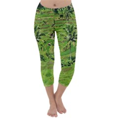 Greenery Paddy Fields Rice Crops Capri Winter Leggings  by Nexatart