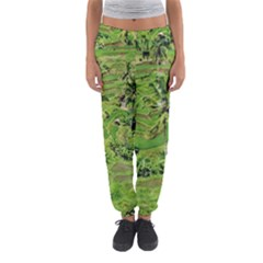 Greenery Paddy Fields Rice Crops Women s Jogger Sweatpants