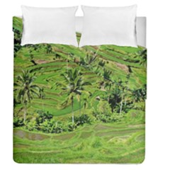 Greenery Paddy Fields Rice Crops Duvet Cover Double Side (queen Size) by Nexatart