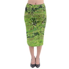 Greenery Paddy Fields Rice Crops Midi Pencil Skirt