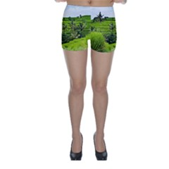 Bali Rice Terraces Landscape Rice Skinny Shorts