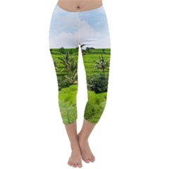 Bali Rice Terraces Landscape Rice Capri Winter Leggings