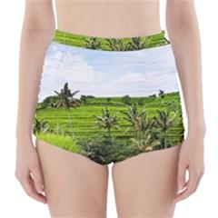 Bali Rice Terraces Landscape Rice High Waisted Bikini Bottoms