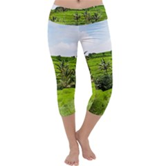 Bali Rice Terraces Landscape Rice Capri Yoga Leggings