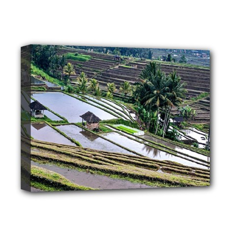 Rice Terrace Rice Fields Deluxe Canvas 16  X 12