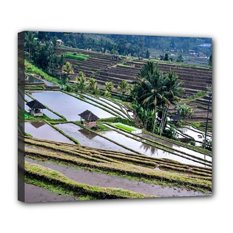 Rice Terrace Rice Fields Deluxe Canvas 24  X 20   by Nexatart