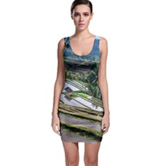 Rice Terrace Rice Fields Bodycon Dress