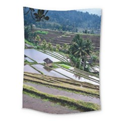 Rice Terrace Rice Fields Medium Tapestry by Nexatart