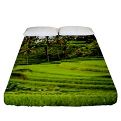 Rice Terrace Terraces Fitted Sheet (california King Size) by Nexatart