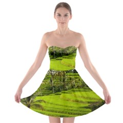 Rice Terrace Terraces Strapless Bra Top Dress